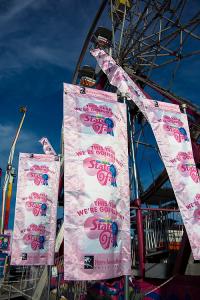 South Carolina breast cancer flags